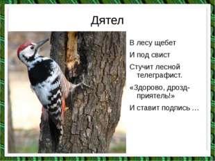 Дятел В лесу щебет И под свист Стучит лесной телеграфист. «Здорово, дрозд-при