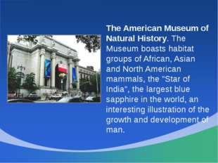 The American Museum of Natural History. The Museum boasts habitat groups of A