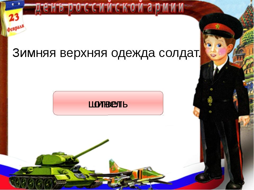 Зимняя верхняя одежда солдат. ответ шинель