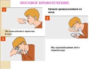 Начало кровоизлияния из носа. Мы прикладываем тряпочку К носу. Мы прикладывае