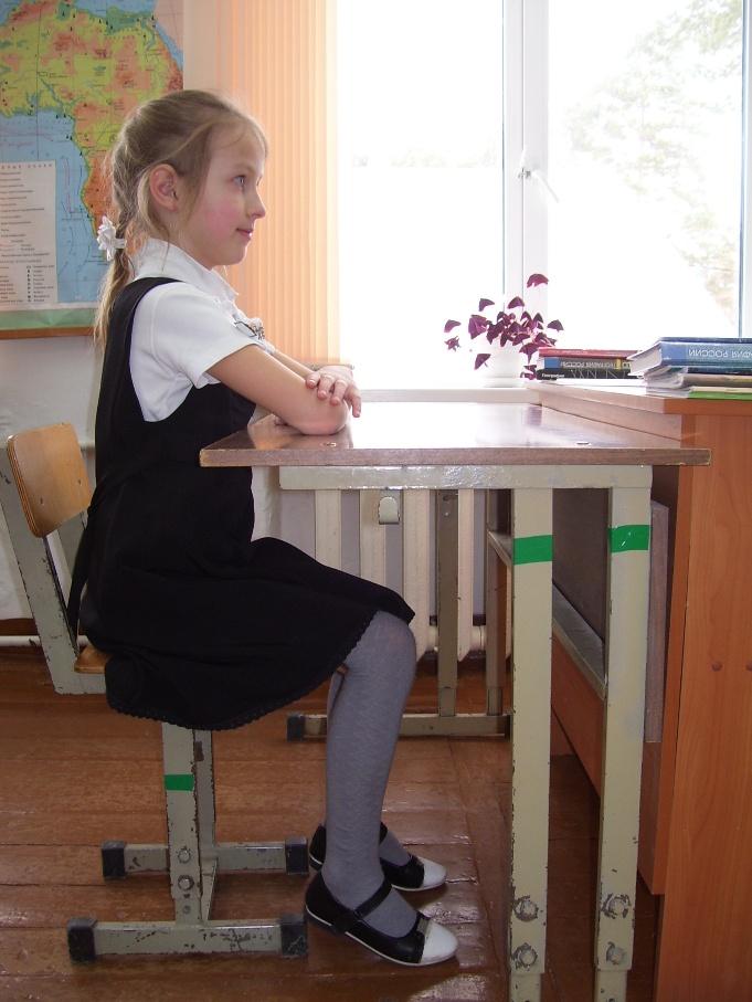 C:\Users\School\Desktop\исследов.работы\фото парта\100_5599.JPG