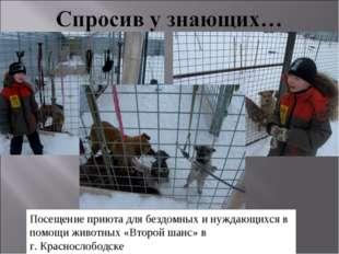 Посещение приюта для бездомных и нуждающихся в помощи животных «Второй шанс»