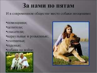 И в современном обществе место собаки неоценимо: помощники; целители; спасате