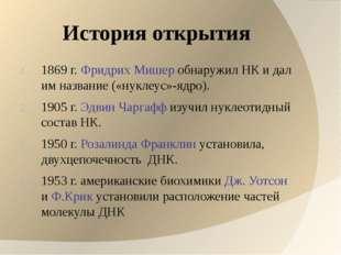 История открытия 1869 г. Фридрих Мишер обнаружил НК и дал им название («нукле