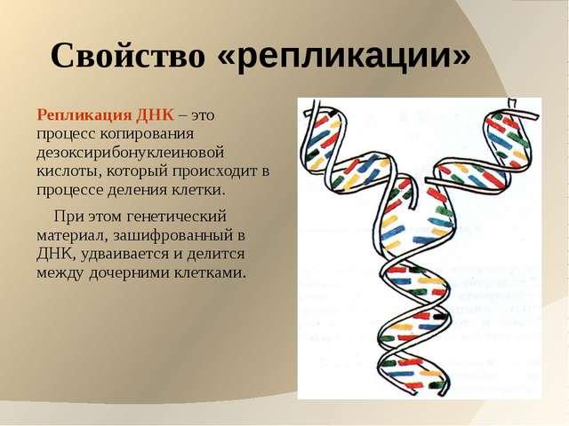 Свойство «репликации» Репликация ДНК – это процесс копирования дезоксирибонук...