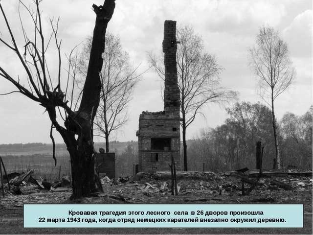Кровавая трагедия этого лесного села в 26 дворов произошла 22 марта 1943 год...