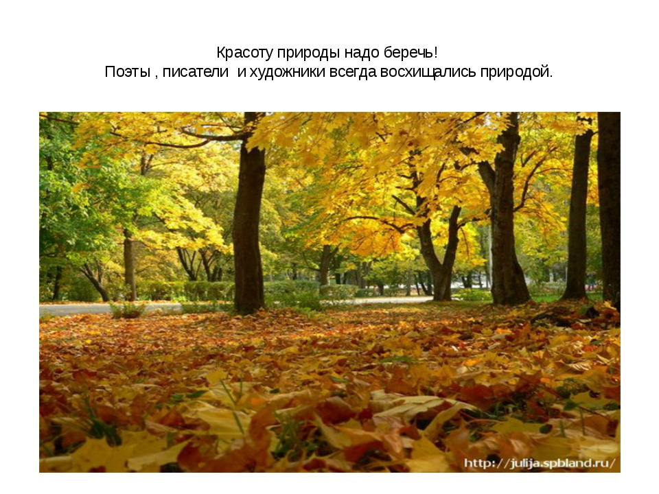 Красоту природы надо беречь! Поэты , писатели и художники всегда восхищались...