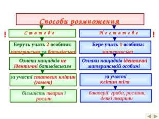 Способи розмноження С т а т е в е Н е с т а т е в е Беруть учать 2 особини: