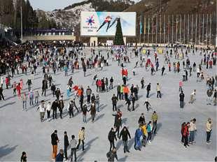 1 января– 6 февраля2011 года -7 Зимние Азиатские игры