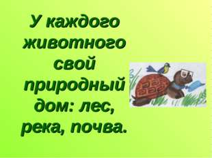 У каждого животного свой природный дом: лес, река, почва.