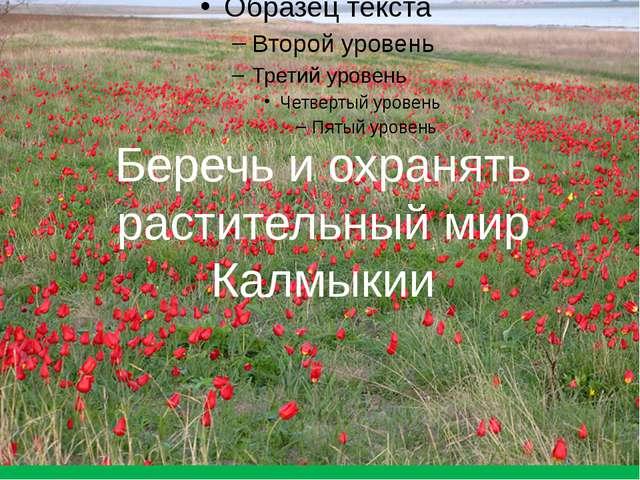 Беречь и охранять растительный мир Калмыкии