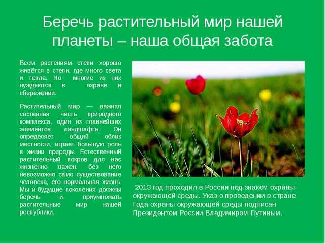 Беречь растительный мир нашей планеты – наша общая забота Всем растениям степ...