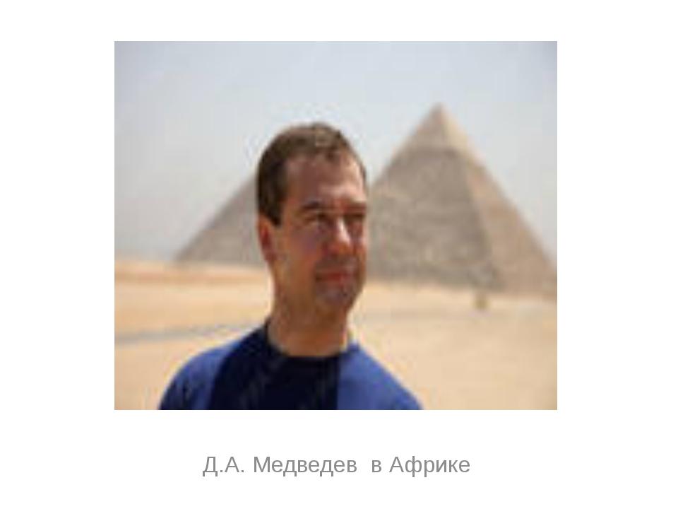 Д.А. Медведев в Африке