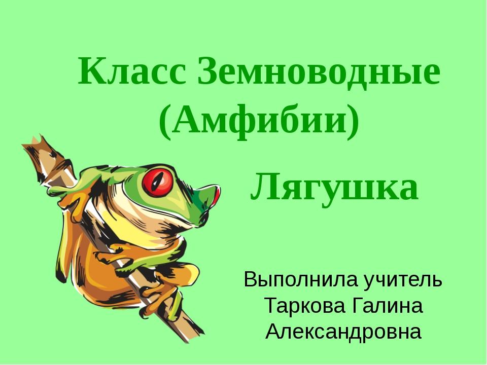 Внутреннее строение лягушки Класс Земноводные (Амфибии) Лягушка Выполнила учи...