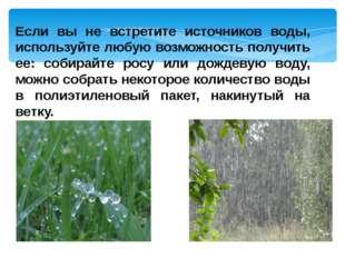 Если вы не встретите источников воды, используйте любую возможность получить