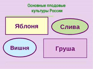 Основные плодовые культуры России Яблоня Груша Вишня Слива