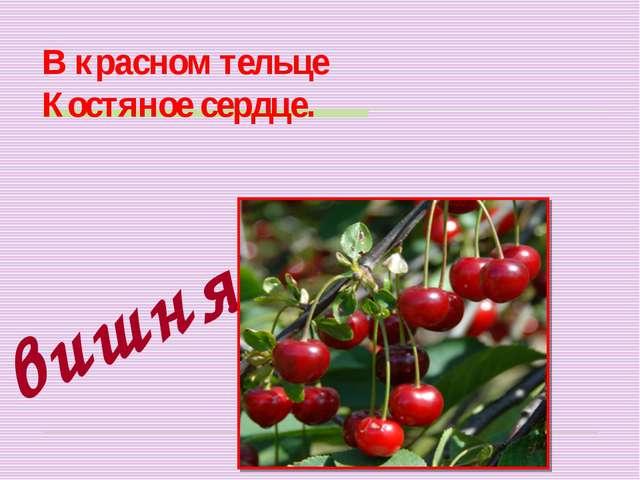 В красном тельце Костяное сердце. вишня