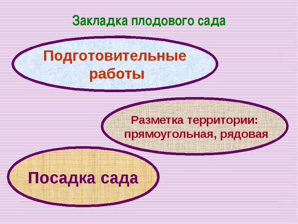 Закладка плодового сада Подготовительные работы Разметка территории: прямоуго...