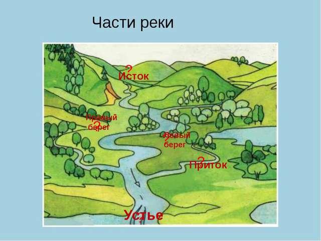 ? Исток ? Правый берег ? ? ? Левый берег Приток Устье Части реки