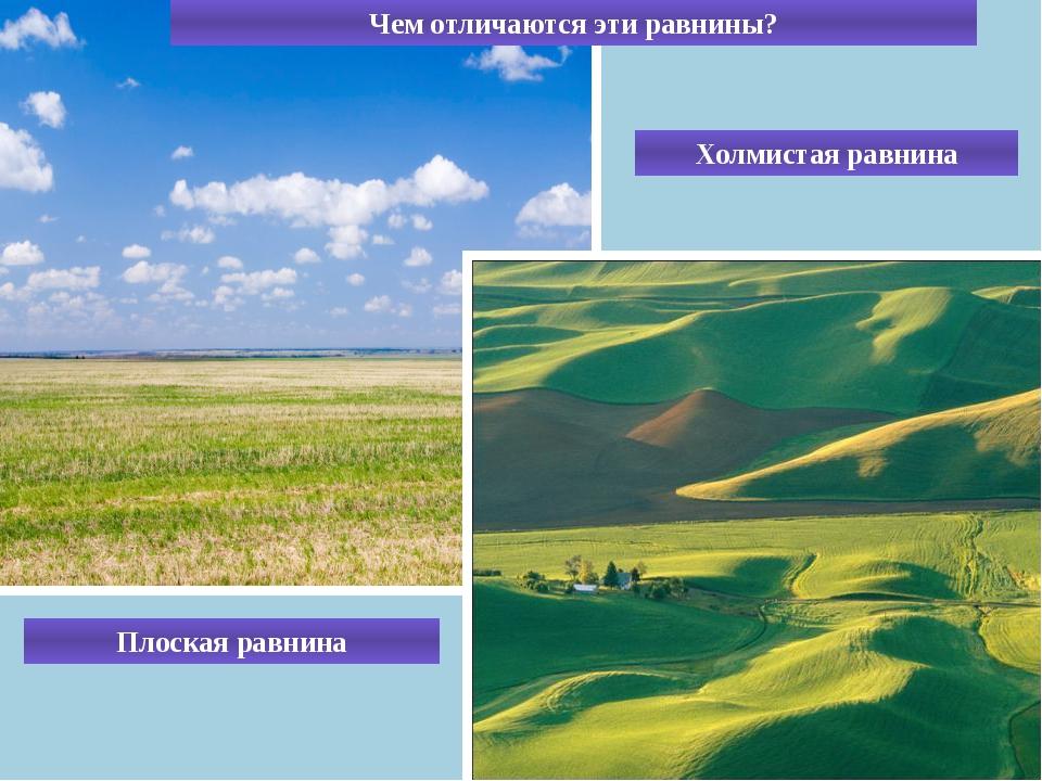 Чем отличаются эти равнины? Плоская равнина Холмистая равнина