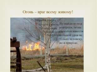 Огонь – враг всему живому! Но выйдя из под контроля, огонь способен нанести б