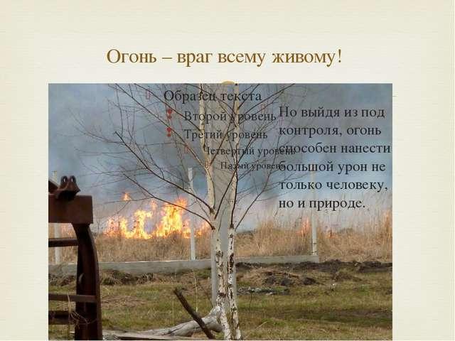 Огонь – враг всему живому! Но выйдя из под контроля, огонь способен нанести б...