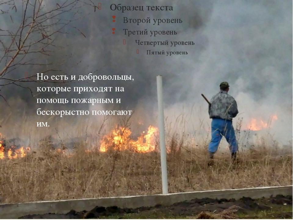 Но есть и добровольцы, которые приходят на помощь пожарным и бескорыстно пом...
