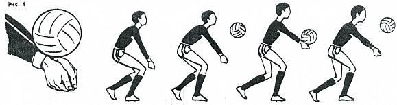 http://www.school61.ru/metodkopilka/fizkultura/voleibol/voleibol.files/image002.jpg