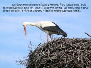 Улюбленим птахом на Україні є лелека. Його назвали на честь божества добра і
