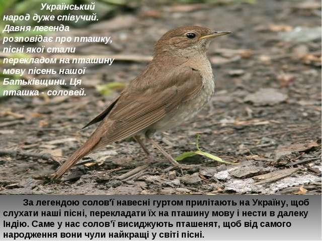 Український народ дуже співучий. Давня легенда розповідає про пташку, пісні...