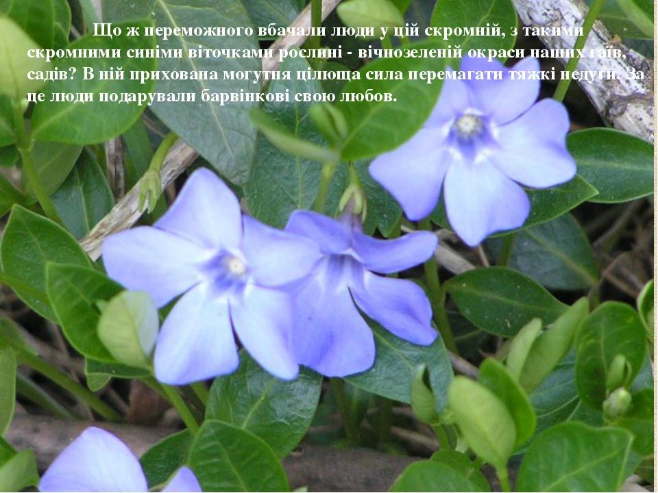 Що ж переможного вбачали люди у цій скромній, з такими скромними синіми віто...