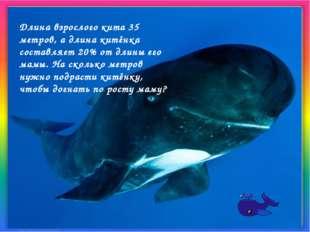 Длина взрослого кита 35 метров, а длина китёнка составляет 20% от длины его