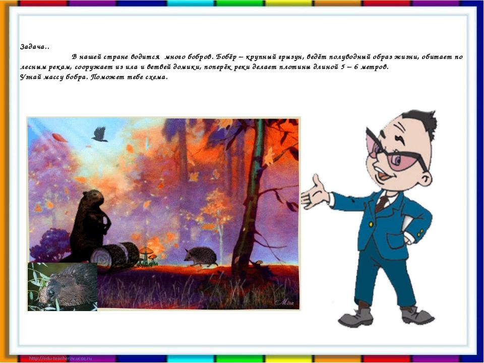 Задача.. В нашей стране водится много бобров. Бобёр – крупный грызун, ведёт п...