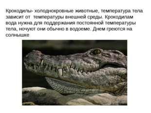Крокодилы- холоднокровные животные, температура тела зависит от температуры в
