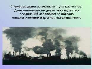 С клубами дыма выпускается туча диоксинов. Даже минимальным дозам этих ядовит