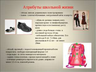 Атрибуты школьной жизни - лёгкая, мягкая, рационально сконструирована - ткани
