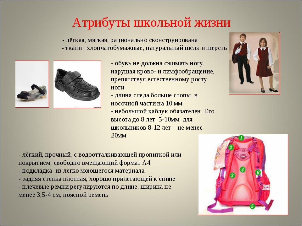 Атрибуты школьной жизни - лёгкая, мягкая, рационально сконструирована - ткани...