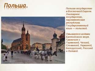 Польша-государство в Восточной Европе. Унитарное государство, парламентская р