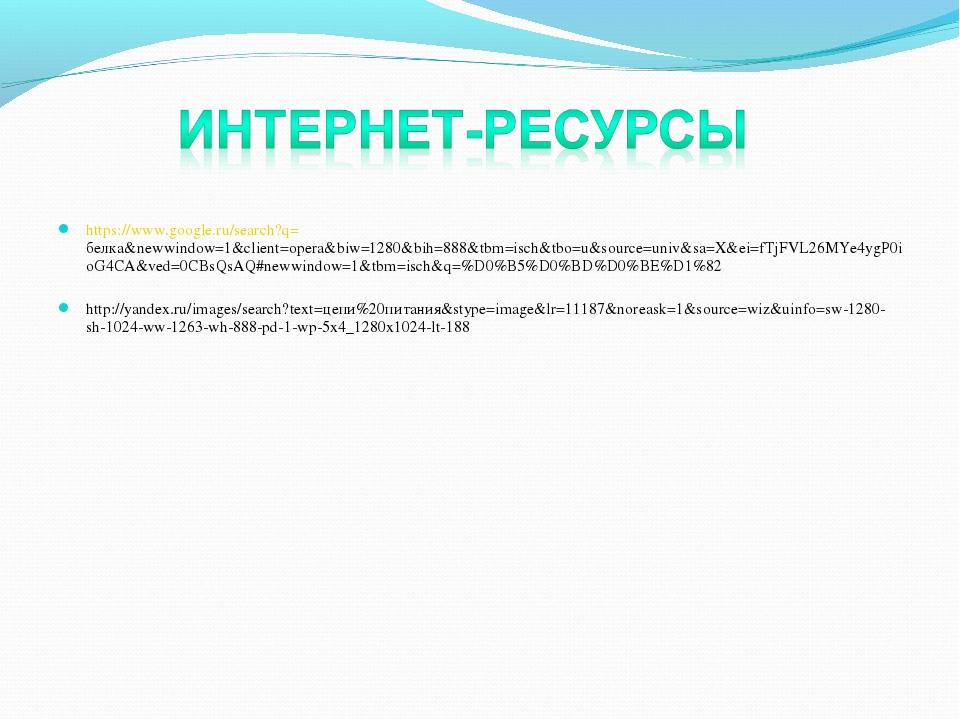 https://www.google.ru/search?q=белка&newwindow=1&client=opera&biw=1280&bih=88...