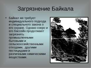 Загрязнение Байкала Байкал же требует индивидуального подхода и специального