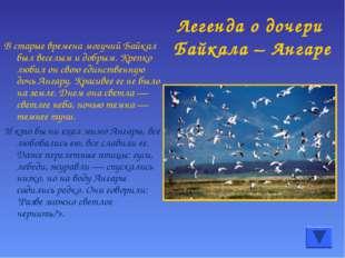 Легенда о дочери Байкала – Ангаре В старые времена могучий Байкал был веселым