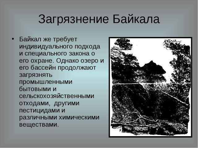 Загрязнение Байкала Байкал же требует индивидуального подхода и специального...