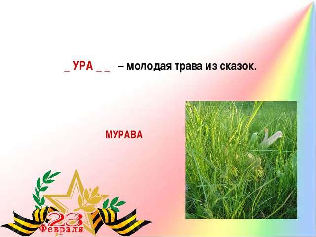 МУРАВА _ УРА _ _ – молодая трава из сказок.
