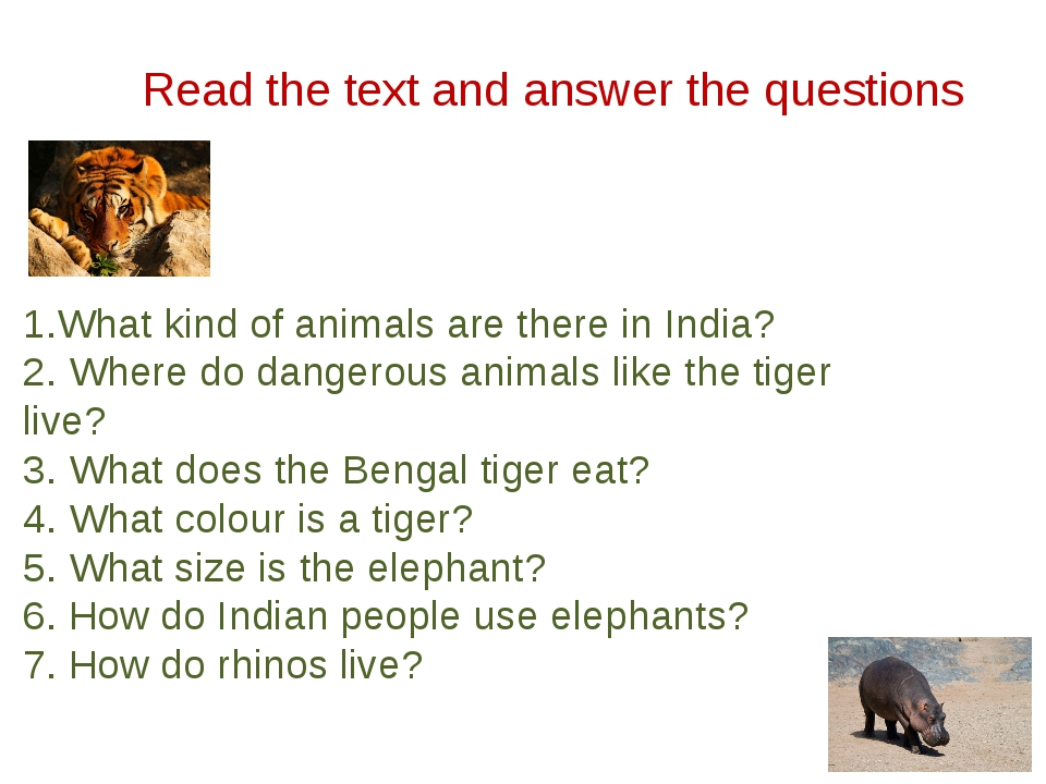 Read the text and answer the questions 1.What kind of animals are there in In...