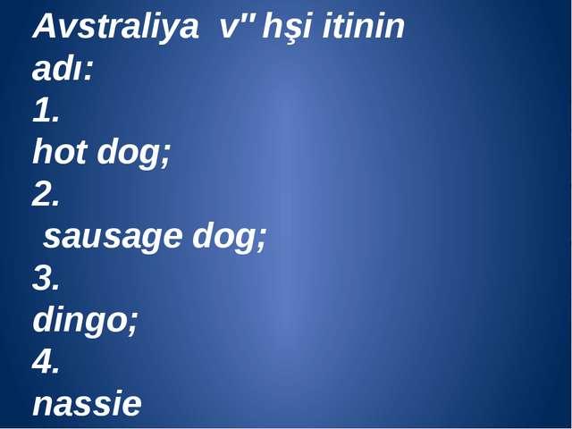 Avstraliya vəhşi itinin adı: 1. hot dog; 2. sausage dog; 3. dingo; 4. nassie