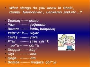 What slangs do you know in Shaki , Canija Nakhchivan , Lankaran ,and etc....?