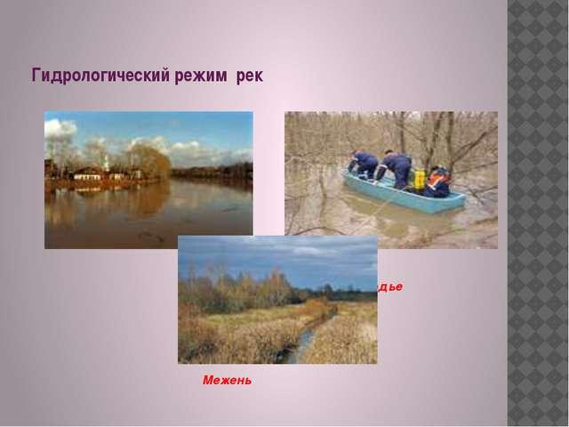 Гидрологический режим рек Половодье Паводок Межень