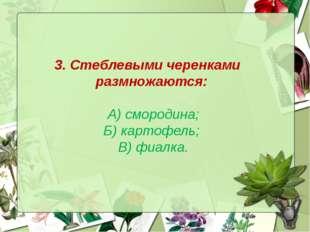 3. Стеблевыми черенками размножаются: А) смородина; Б) картофель; В) фиалка.