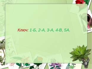 Ключ: 1-Б, 2-А, 3-А, 4-В, 5А.