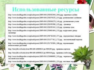 Использованные ресурсы http://www.healthgarden.ru/uploads/posts/2009-08/12503